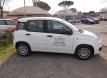 Fiat NOLEGGIO NUOVA PANDA IBRIDA 5 POSTI